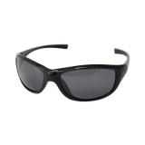 Sunglasses Shiny Black Frame - Grey Polarised - Straight Arm